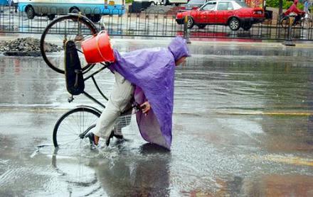 下雨打伞背影图片图片大全 黑夜中雨天撑伞的情侣背影高清
